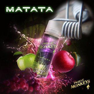 Twelve Monkeys Matata Coils