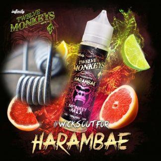 Twelve Monkeys Harambae Coils
